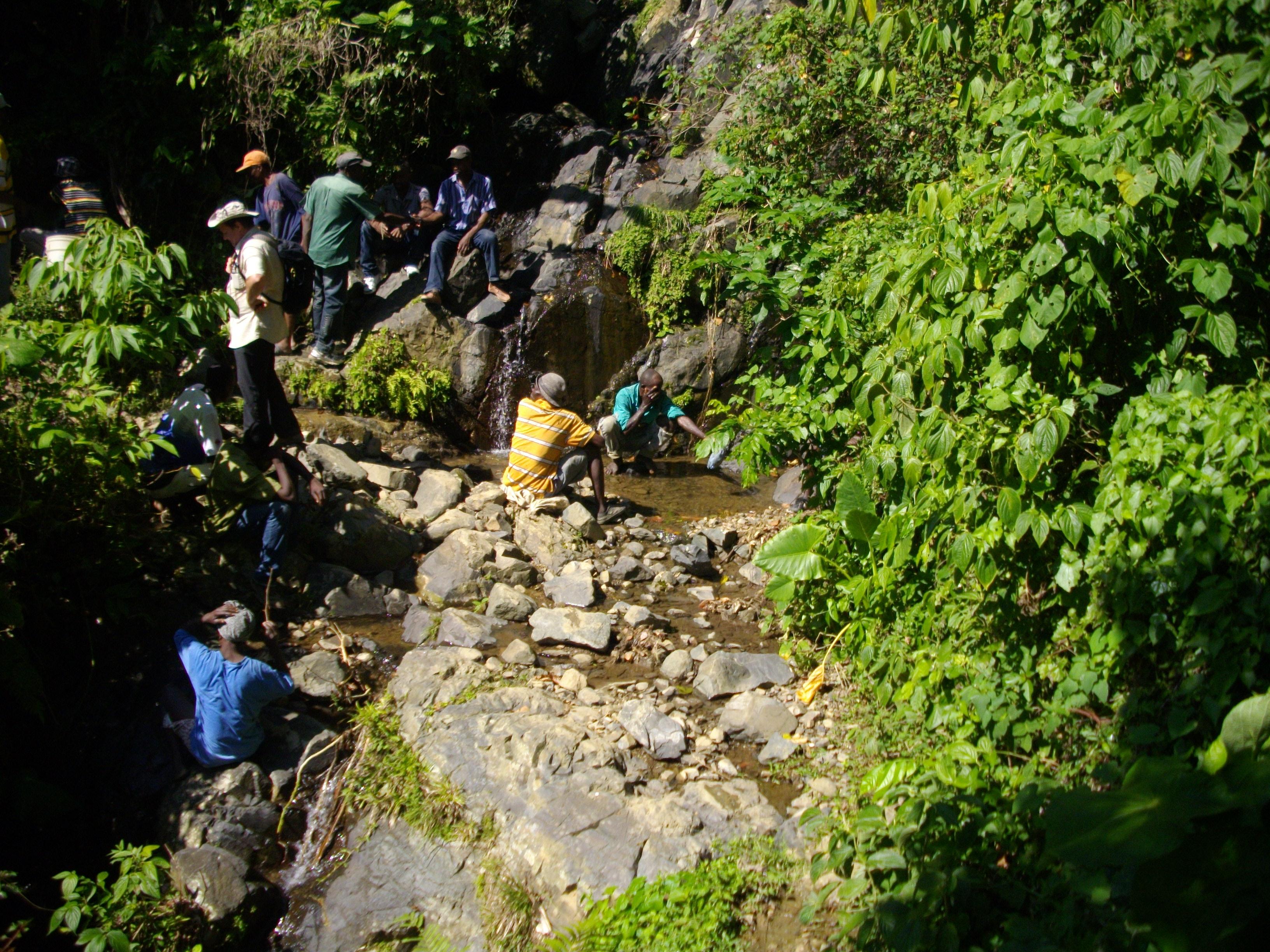Protection de la Source Chivreuil par la mise en place d'un lot boisé
